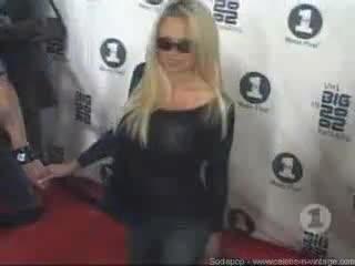 Pamela Anderson scene