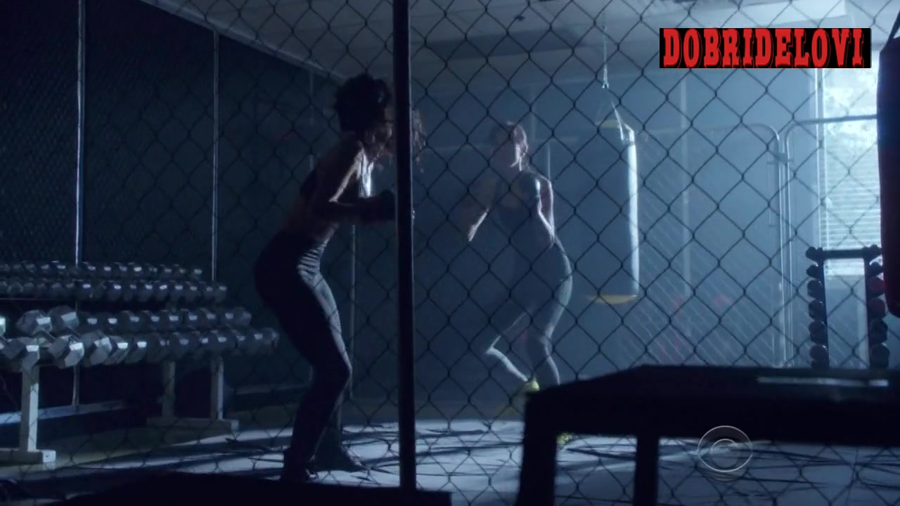 Tristin Mays and Sandrine Holt sexy sparring session in MacGyver