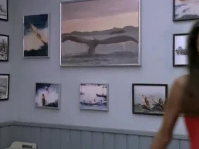 Traci Bingham looks fantastic from Baywatch